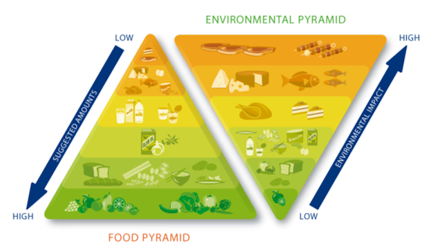 double-pyramide-alimentaire