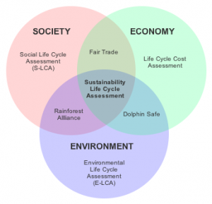 searching for the triple bottom line is social life cycle
