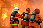 Risks & Policy Options for Bushfire and Extreme Heat