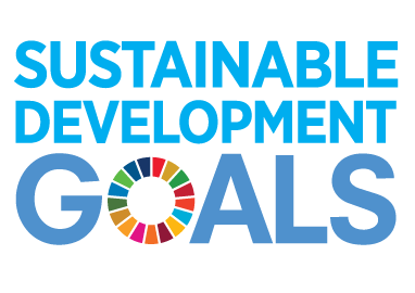 The Sustainable Development Goals – How to go from aligning icons to driving impact.